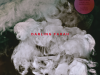 CIV048-DARLING-FARAH-BODY-REMIXED-FRONT-COVER-WEB-2000